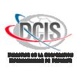 Logo Direction de la Coopération Internationale de Sécurité (DCIS)